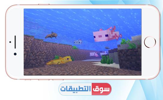 الحيوان المائي axolotl
